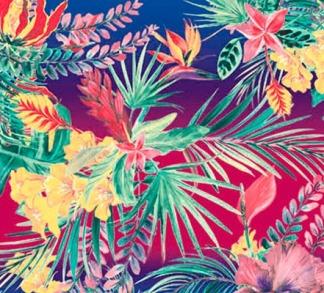 elementos-tropicais-inverno-2017-blog-lunelli-2