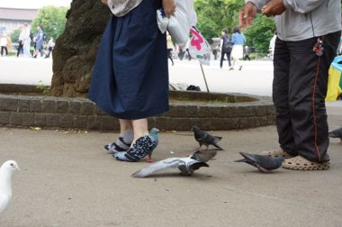 pigeon-shoes-japanese-woman-2