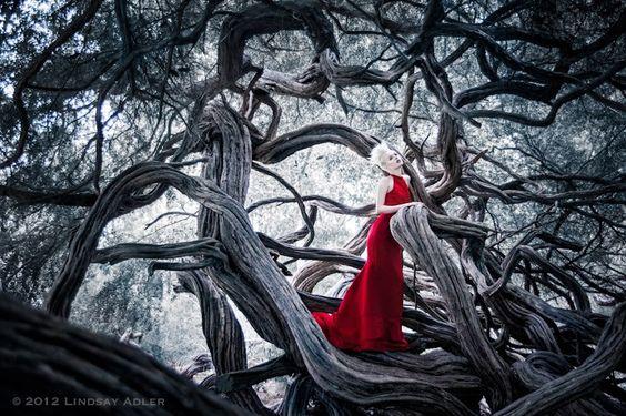 lindsay-adler-fotografia-moda-arte-para-inspirar (2)